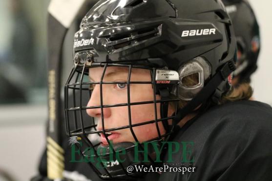 aa_aprosperhockey_915