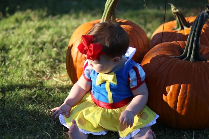 1507733069___Pumpkinfest_84